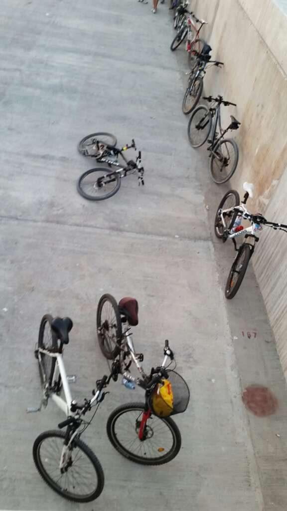 Cu-bicicleta-pe-digul-de-larg