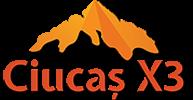 CiucasX3