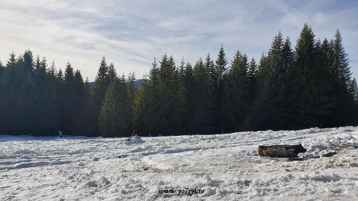 De iarnă de prin munții noștri(18)