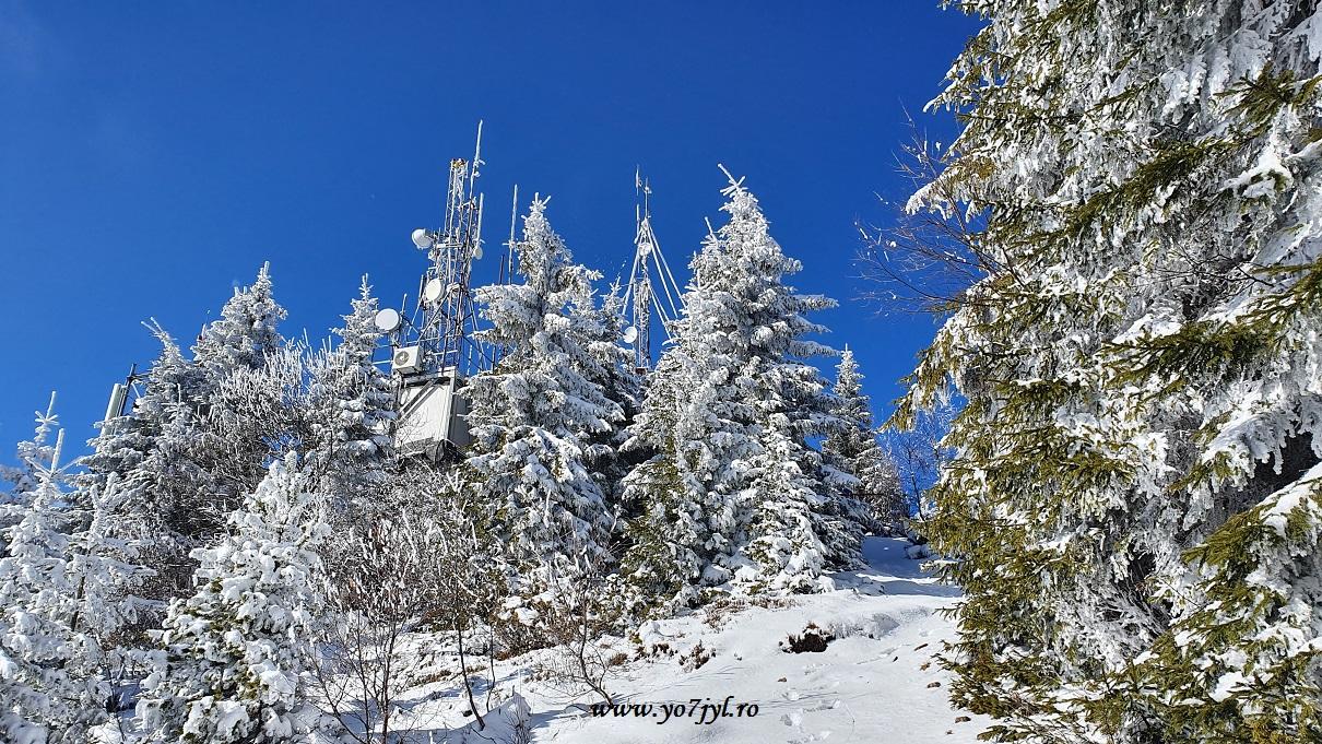 Pe tărâmul iernii în Masivul Cozia