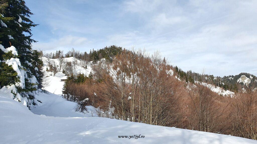 Imagini de ianuarie din Masivul Cozia